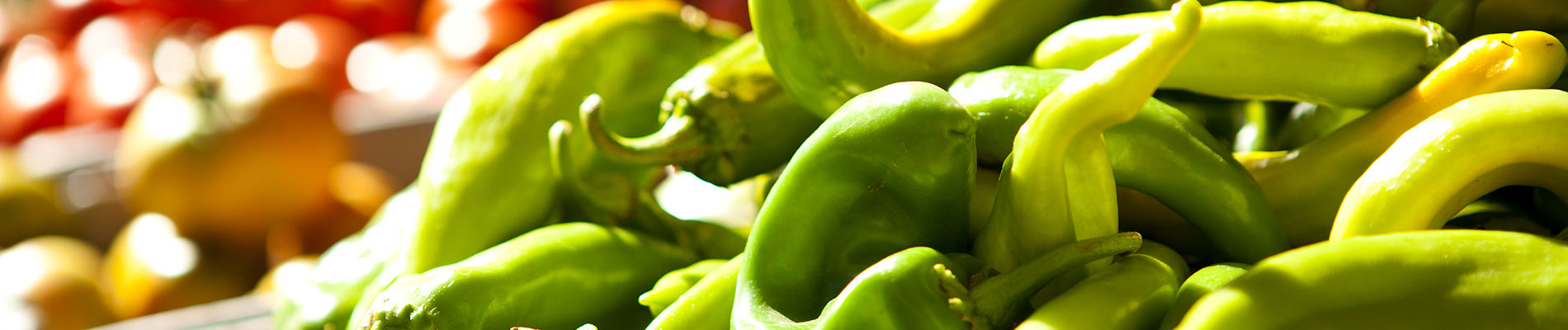 New Mexican Chile – Hatch Green Chile